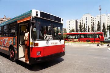 kn_bus-2