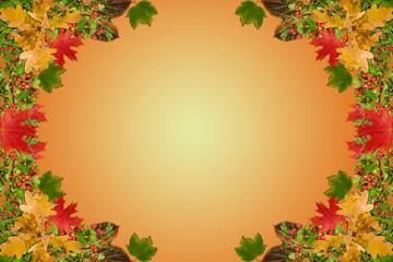 autumnal leaves decoration border