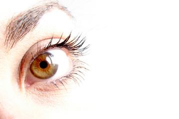 clara mirada