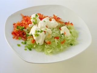 vegetable salad with cream and green leaves
