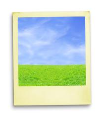 polaroid photo: blue sky and green grass