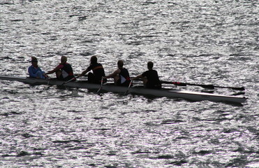 rowers in backlight