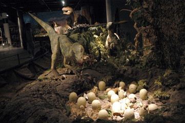 Fototapeta premium dinozaury 15