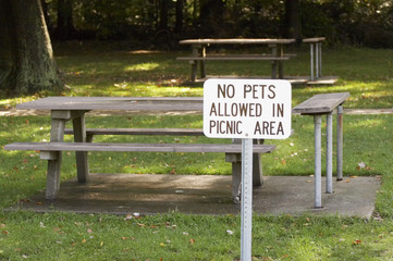 sign: no pets allowed in picnic area - landscape f