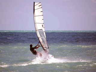 windsurfing /virginia key