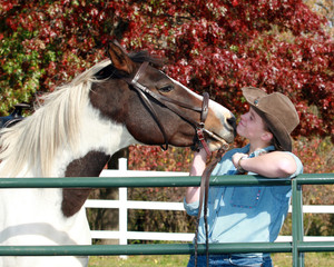 horse girl kissing