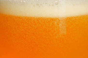 bière 1