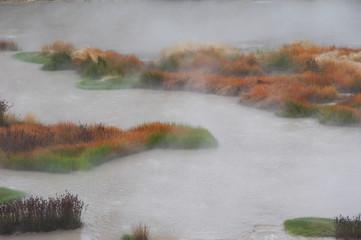 heisse quellen - yellowstone national park