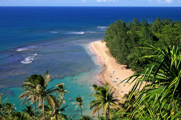 beautiful beach on kauai