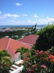 view from red roofs