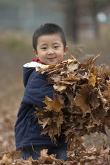 boy with armful leaves