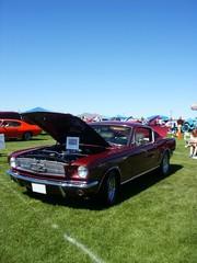 Fototapete - dark red american muscle car