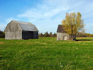 old wooden barns in the green field