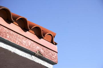 details dachpfannen