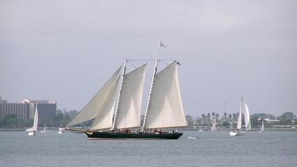 tall ship on bay