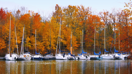 boats in autumn
