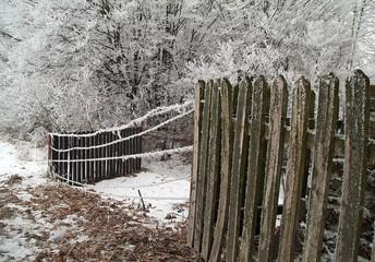 winter scenery 1