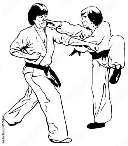 kung fu vs karate/taekwondo