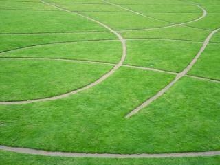 pelouse stylée
