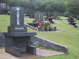 hawaii memorial