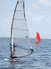 windsurfing off key biscayne