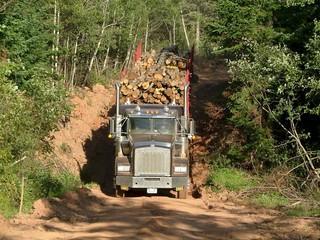 kanada truck holz lkw logging transport