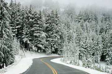 snow road 4