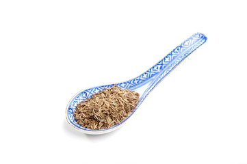 spices: caraway (cumin family)