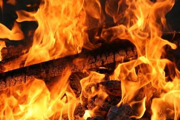 Poster de jardin Texture de bois de chauffage wood fire