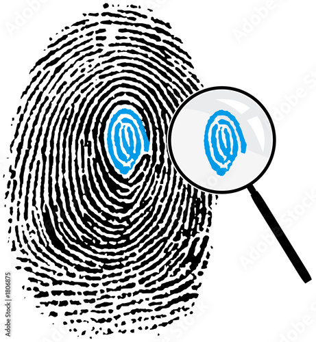 fingerprint evidence fact or fiction essay
