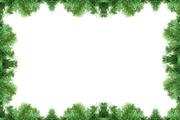 Fototapeta pine tree frame