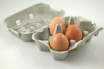egg's in a box