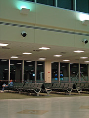 lone traveler