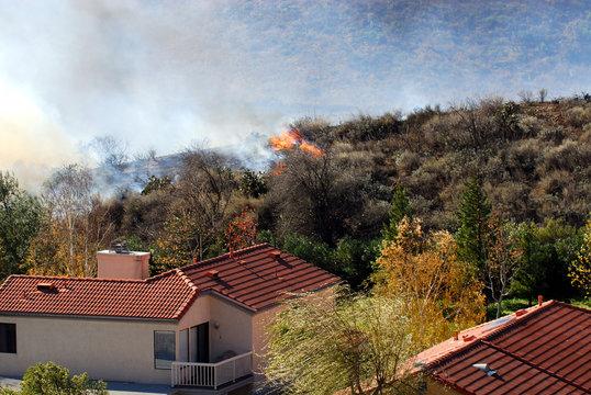 approaching brushfire