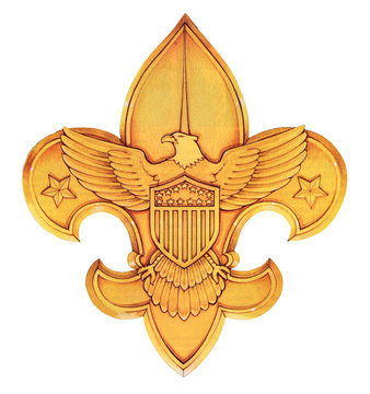 boy scouts of america logo or emblem