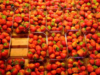erdbeer-stand