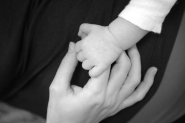adult hand holding baby's hand