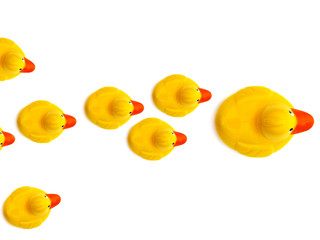 group a yellow rubber ducks