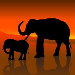 elephant silhouette c