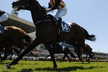 under rails horseracing