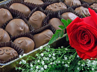 chocolates and a rose