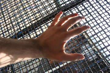 hand behind a cage