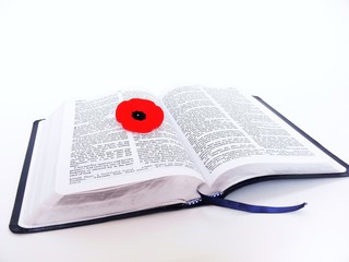 bible with poppy   40960