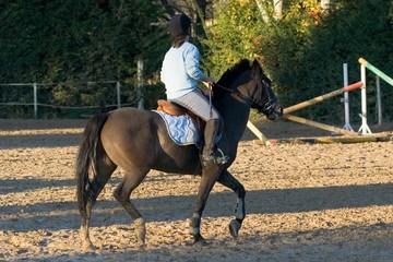 chevaux 034
