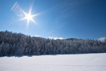 fresh snow in sunshine