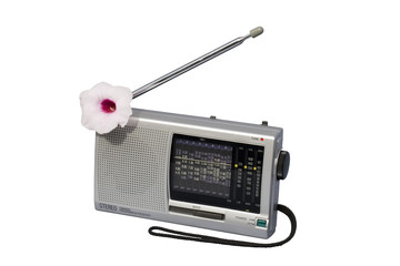 blooming radio