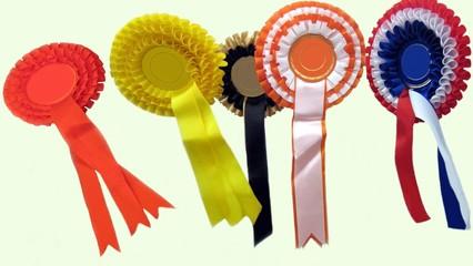 rossett. prize. award. diversity
