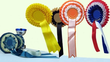 rossett. award. prize. cup. diversity
