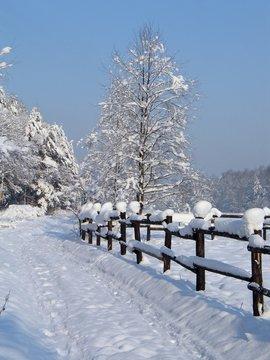 winter at mountains - beskid - poland