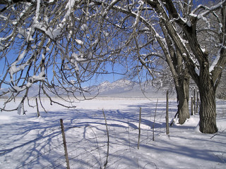 winter at the sangre de cristo mountains
